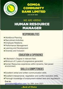 Read more about the article Human Resource Manager